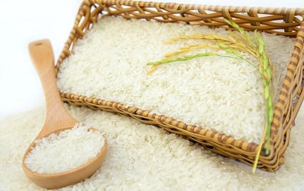 越南对英国的大米出口量猛增 但需要加强品牌建设 hinh anh 1