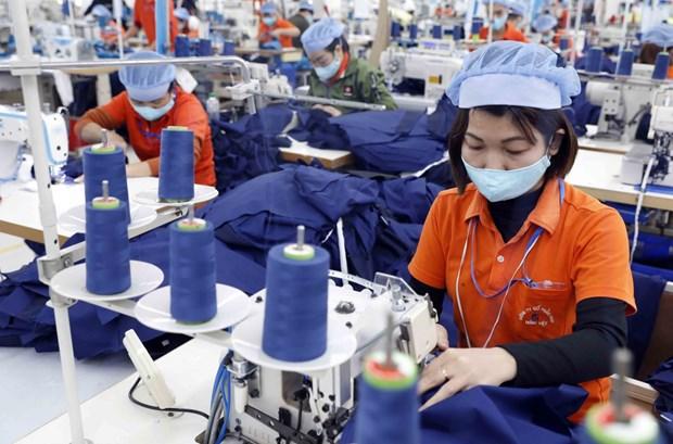 越南纺织业力争实现可持续发展目标 hinh anh 1