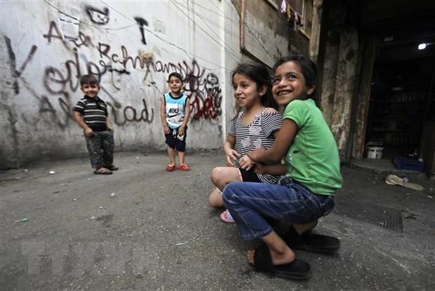 越南与联合国安理会:越南呼吁国际社会向黎巴嫩提供援助 hinh anh 1