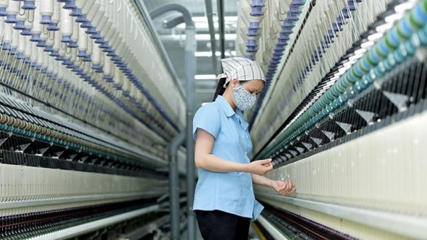 土耳其受理针对越南涤纶扁丝的反倾销调查申请书 hinh anh 1