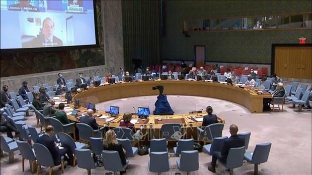越南与联合国安理会:从性别角度看促进萨赫勒和平与安全问题 hinh anh 1