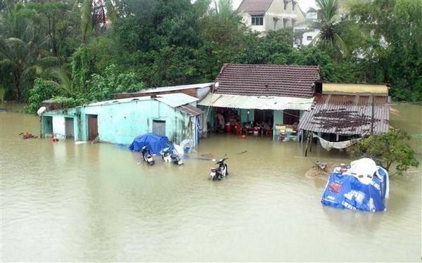 2021年前6月自然灾害给越南造成经济损失约5080亿越盾 hinh anh 1