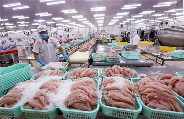 2021年越南水产品出口额有望达90亿美元 hinh anh 1