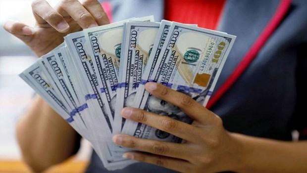7月5日上午越盾对美元汇率中间价下调6越盾 hinh anh 1