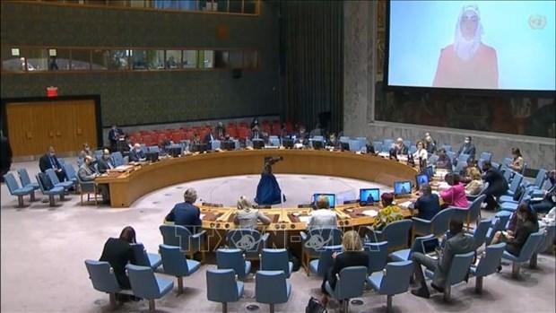 越南与联合国安理会:越南提议优先向叙利亚人民提供人道主义援助 hinh anh 1