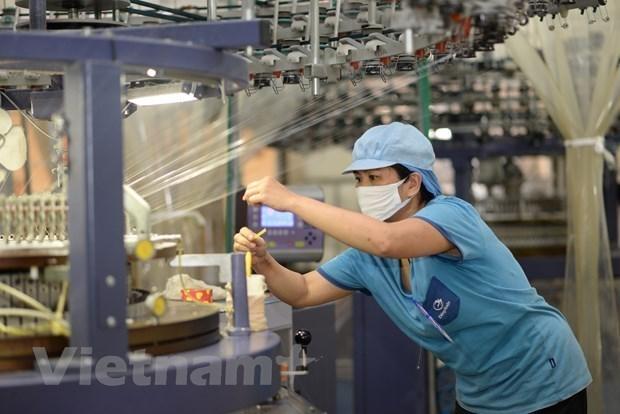 世界银行:2021年越南经济增长率达4.8% hinh anh 2