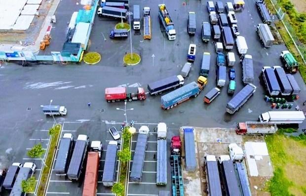 越南贸易、运输和旅游遭新冠疫情重创 hinh anh 1