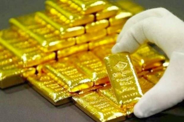 8月30日上午越南国内黄金价格上涨15万越盾 hinh anh 1