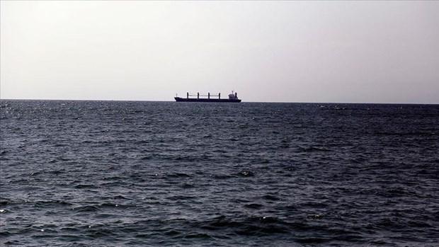 韩国寻找海上失踪的越南船员 hinh anh 1