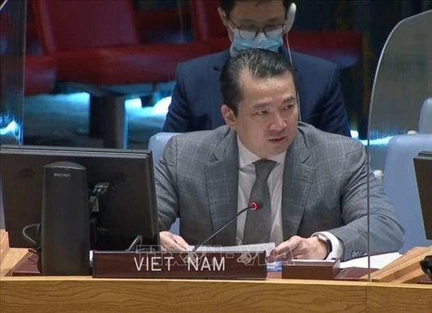 越南与联合国安理会:越南谴责使用化学武器的行为 hinh anh 1