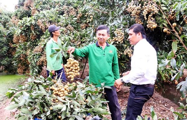 Anh Nguyen Huu Thanh tro thanh ty phu tu trong nhan Ido hinh anh 1