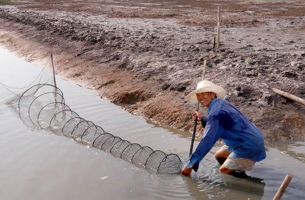 Dam am Tet co truyen Chol Chnam Thmay cua dong bao Khmer hinh anh 2