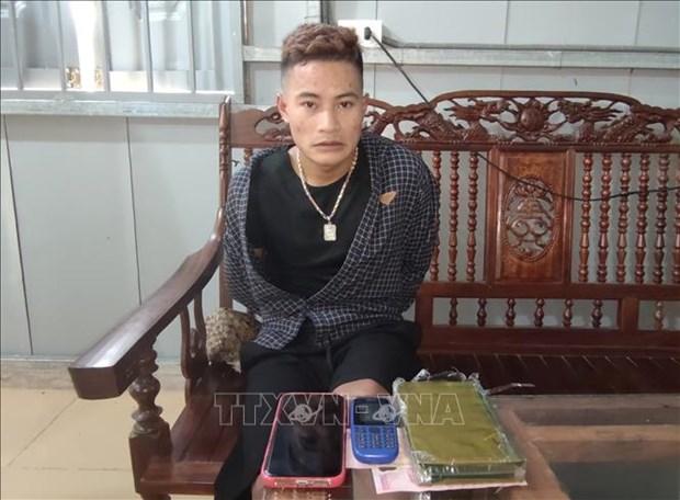Bat doi tuong Lo Van Ha van chuyen trai phep 1 banh heroin hinh anh 1