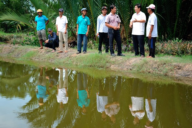 Hieu qua tu mo hinh san xuat lua - tom trong vung dong bao Khmer o vung sau Vinh Thuan (Kien Giang) hinh anh 4