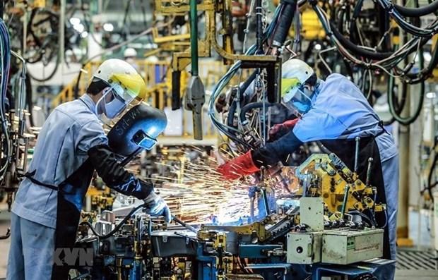 麦肯锡咨询公司高度评价越南经济复苏能力 hinh anh 1