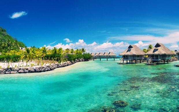 把富国建设成为国际性服务旅游中心 hinh anh 2