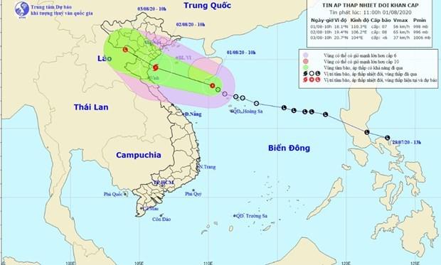 热带低压发展为今年第二号台风 越南政府副总理要求主动采取应对措施 hinh anh 1