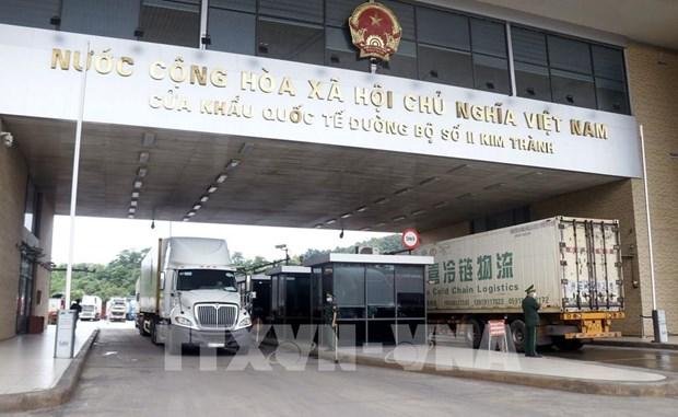 越南企业努力确保销往中国的水产品质量安全 hinh anh 1