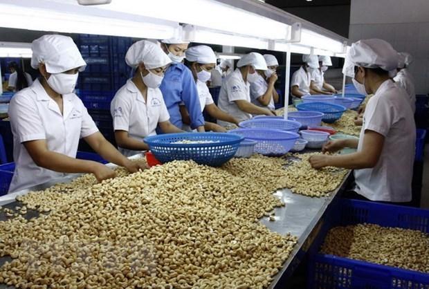 越南力争2030年农林水产品出口额达600-620亿美元 hinh anh 1