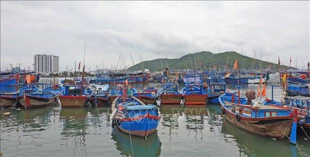 克服IUU黄牌警告:宁顺省密切监控出海渔船 hinh anh 1