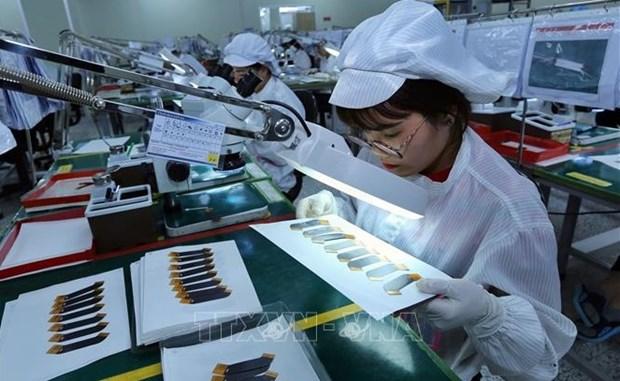 """上半年经济发展情况:越南狠抓工作落实 努力实现""""双重目标"""" hinh anh 2"""