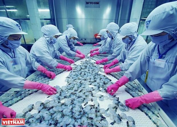 着力纾解困难 力争实现全年虾类产品出口额达逾40亿美元 hinh anh 1