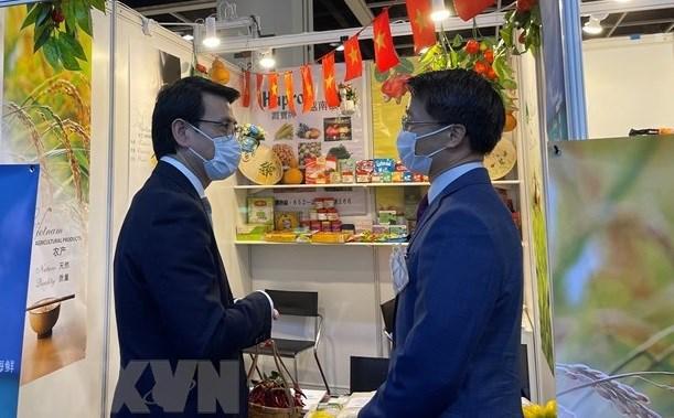 后疫情时期越南与中国香港合作潜力巨大 hinh anh 1