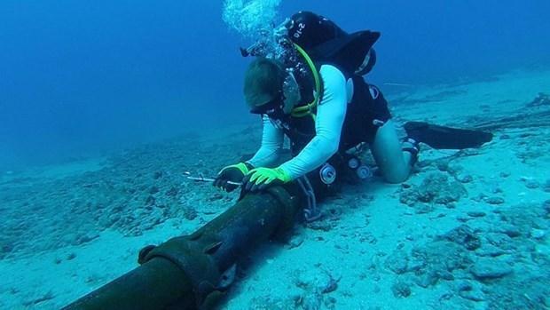 AAE-1海底光缆出现故障 越南与国际互联网联系受影响 hinh anh 1