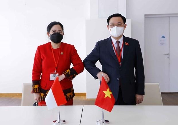 越南国会主席王廷惠会见印尼国会议长 hinh anh 1