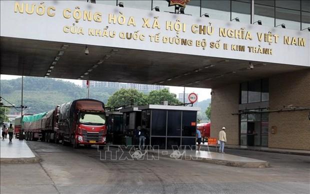 9·2国庆节期间近千吨农产品通过老街口岸出口 hinh anh 1