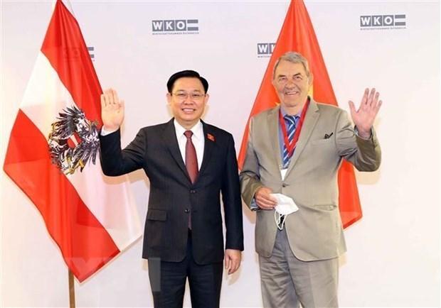 越南与奥地利经贸合作继续向前迈进 hinh anh 1