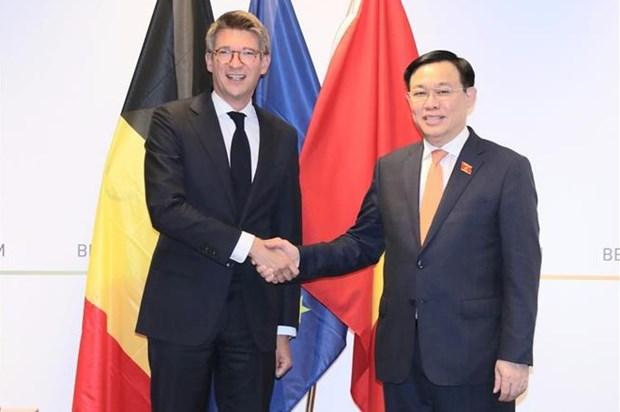 越南国会主席王廷惠会见比利时副首相 hinh anh 1
