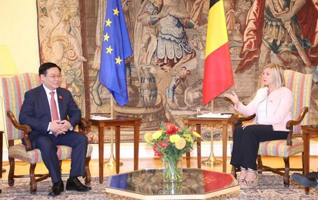 越南国会主席王廷惠与比利时众议院议长举行会谈 hinh anh 1