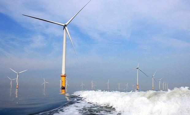 越南海洋和岛屿:越南海上风电发展潜力巨大 hinh anh 1