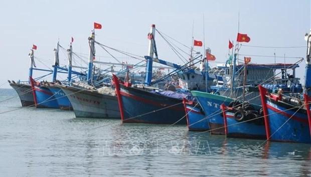 """越南下定决心解除 """"黄牌警告"""" 助力打造与国际社会深度融合、可持续发展的渔业 hinh anh 1"""