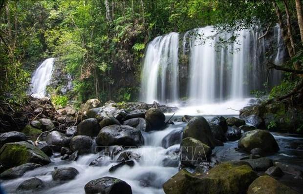 """越南""""主山""""和""""昆何农""""正式列为世界生物圈保护区:对全球性荣誉称号的责任 hinh anh 2"""